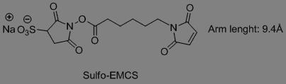 Sulfo-EMCS