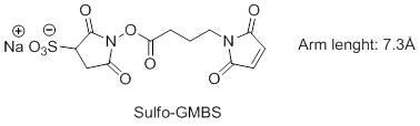 Sulfo-GMBS
