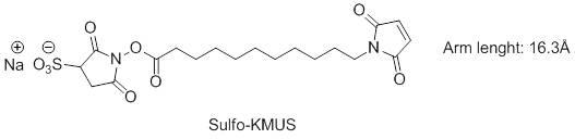Sulfo-KMUS