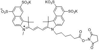Sulfo-Cy3.5 NHS