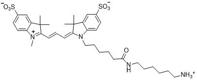 Sulfo-Cy3-amine