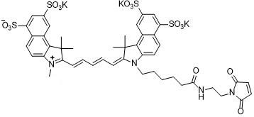 Sulfo-Cy5.5 maleimide