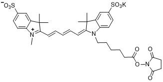 Sulfo-Cy5-NHS
