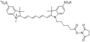 Sulfo-Cy7-NHS