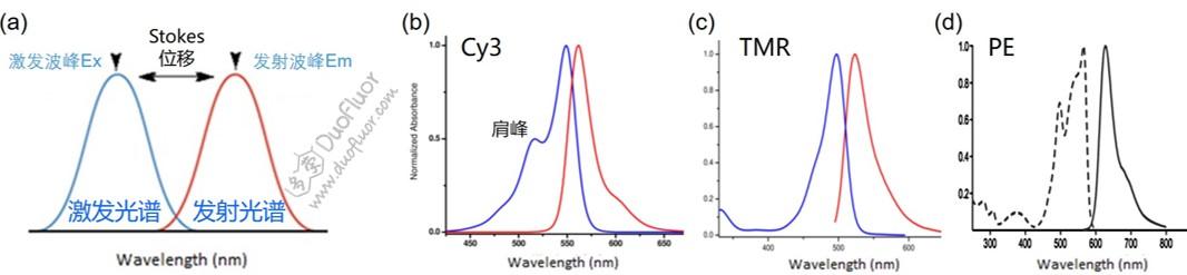 常见染料荧光图谱