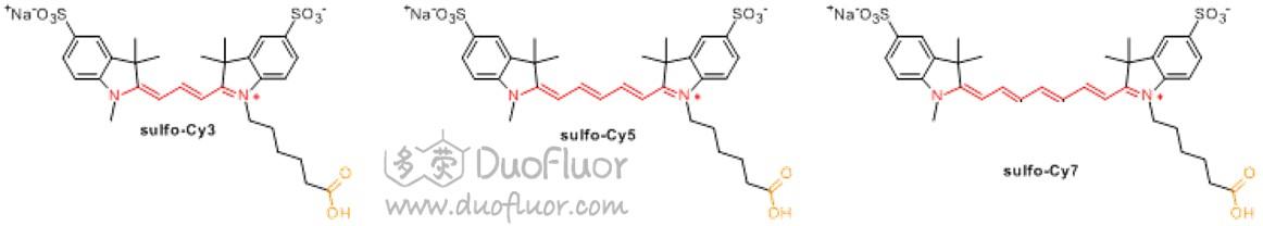 磺化Cy染料化学结构