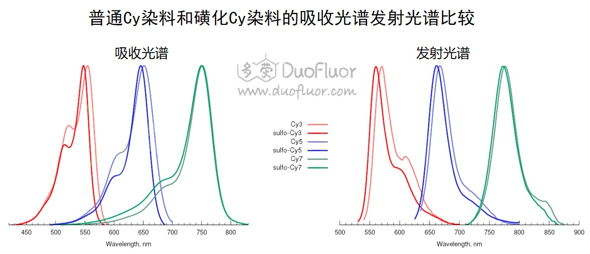 Cy染料磺化引起光谱蓝移
